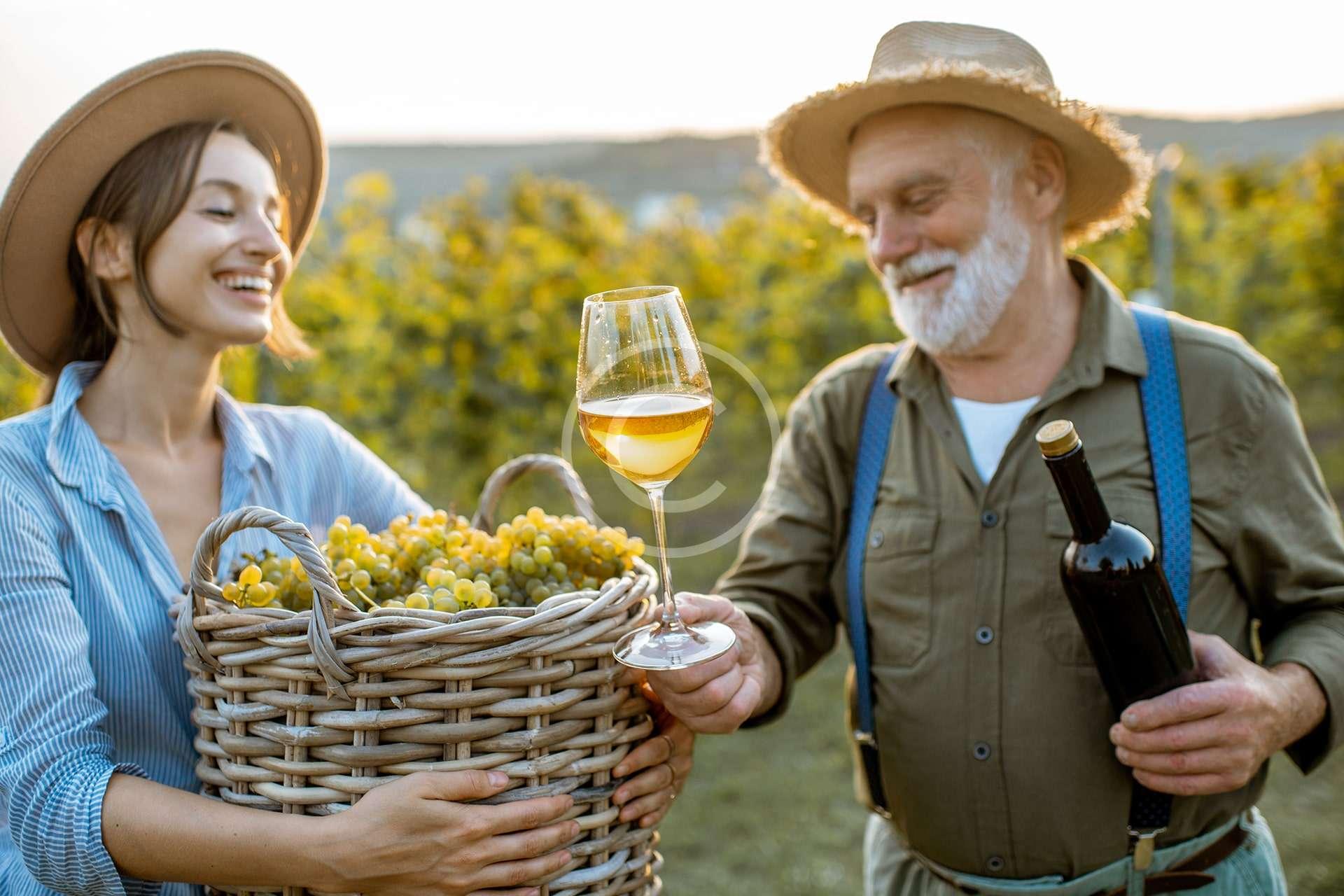 Winemakers' Association