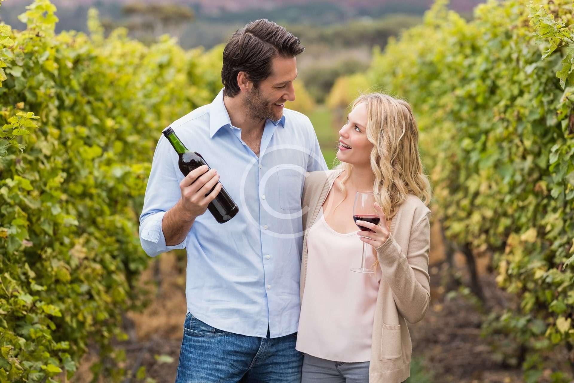 Winery Toors